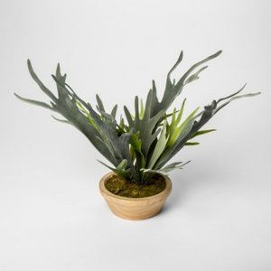 Threshold   Faux Staghorn Fern in Pot